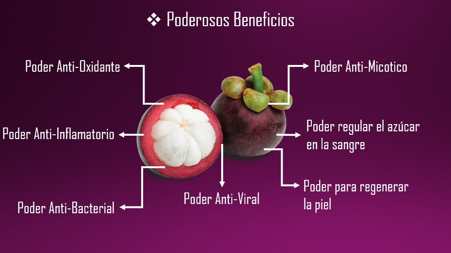 fruta mangostan